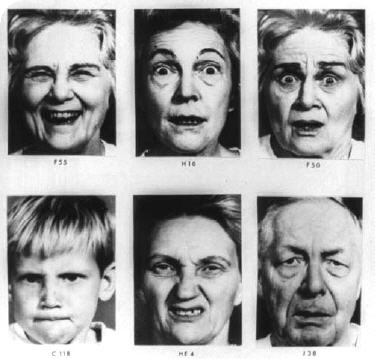 a cross cultural and developmental study of facial expression interpretations Paul ekman cross-cultural research on facial expression and the developments of methods to measure facial expression are briefly summarized what has been learned about emotion from this work on the face is then elucidated.